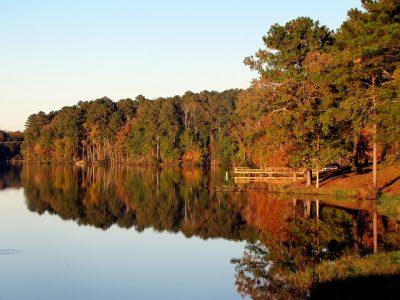 湖、鏡、木々