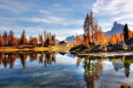 風景、反射、秋