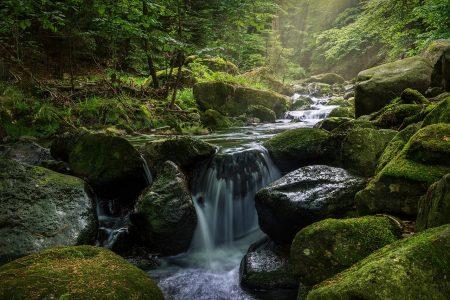 川、自然、せせらぎ