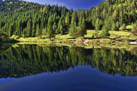 自然、風景、反射