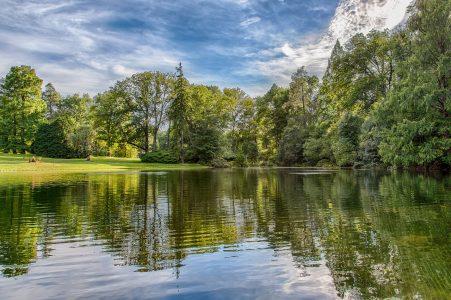 自然、湖畔、森林