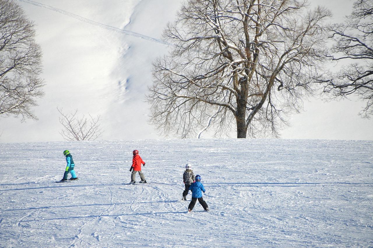 スキー、初心者、雪